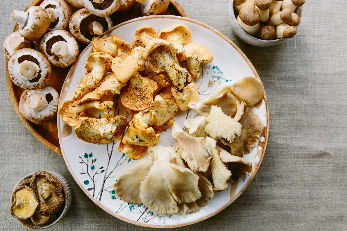 Best Functional Mushrooms to Eat for Better Health | BrainMD