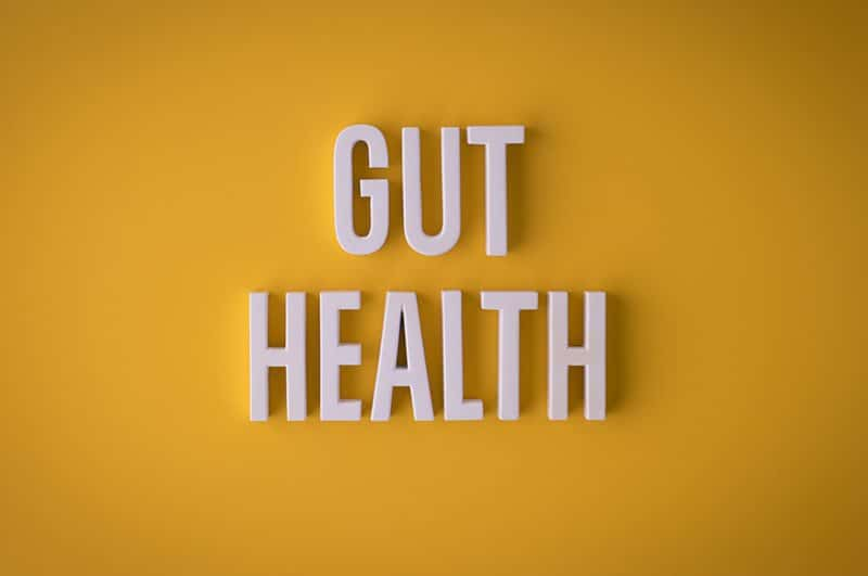 Gut Health Image